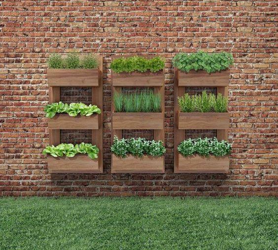 muros decorados com vasos de flores