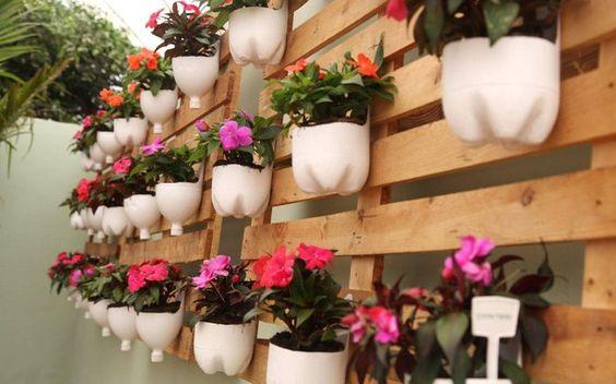 Plantas em muros