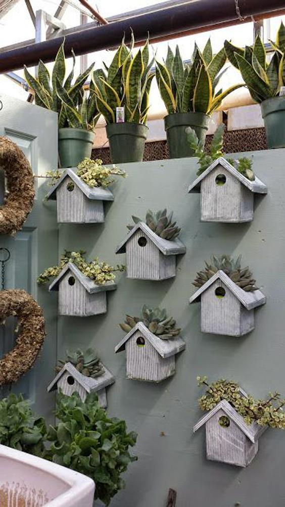 Muros com flores