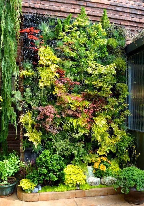 como decorar muro com plantas