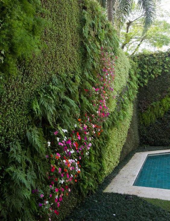 decoração de plantas em muros