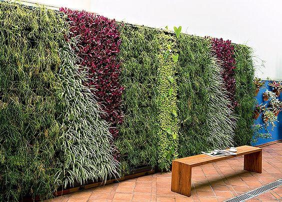 como decorar muro de quintal