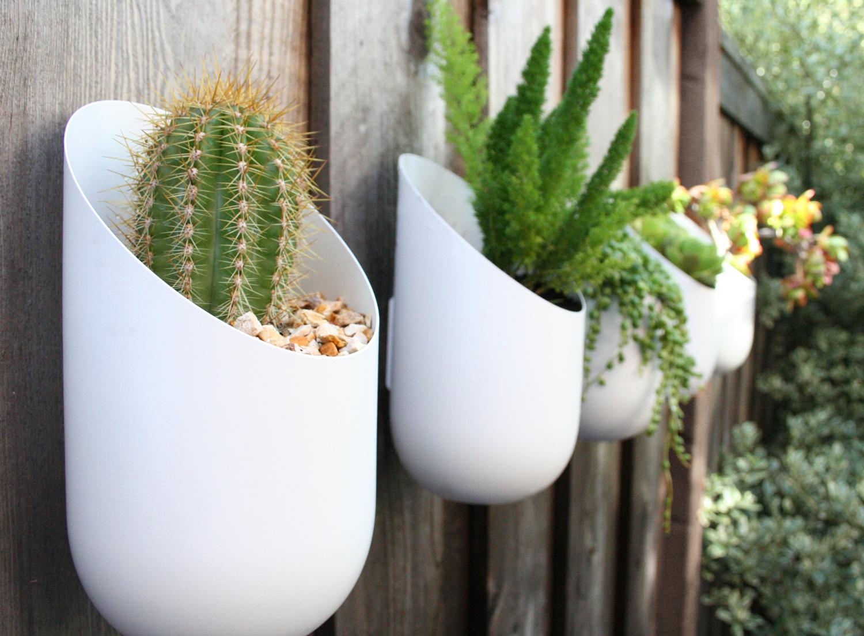 decorar muro com plantas