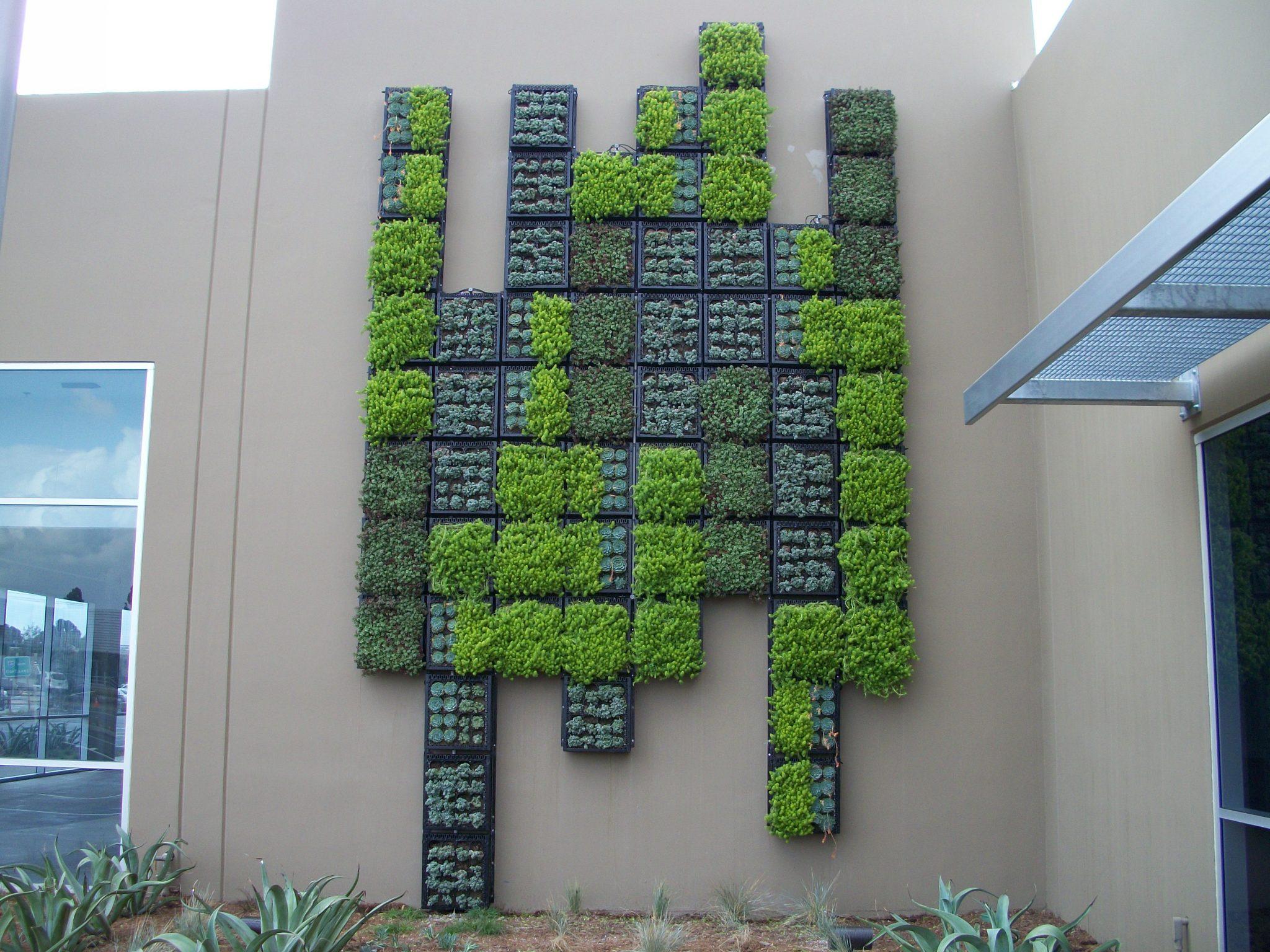 decoração de muros de jardins