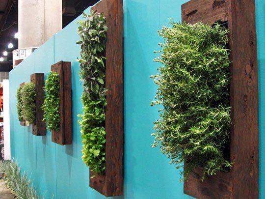 decoração de plantas na parede