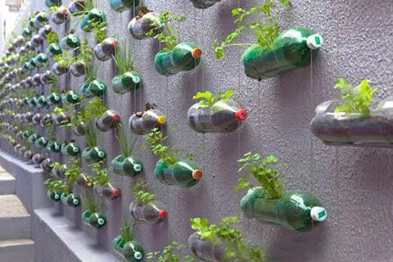 decorar muro do quintal