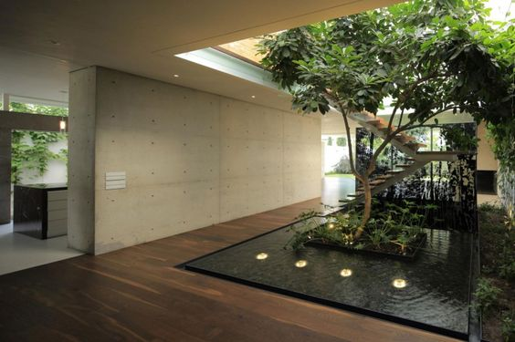 jardim interno com agua