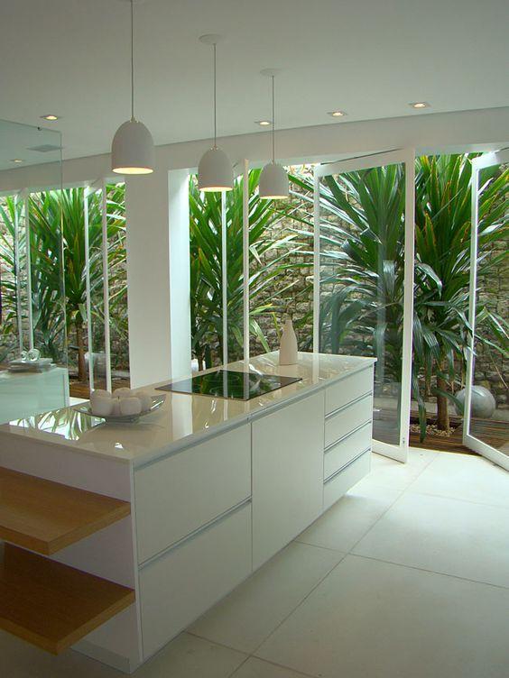 jardim interno na cozinha