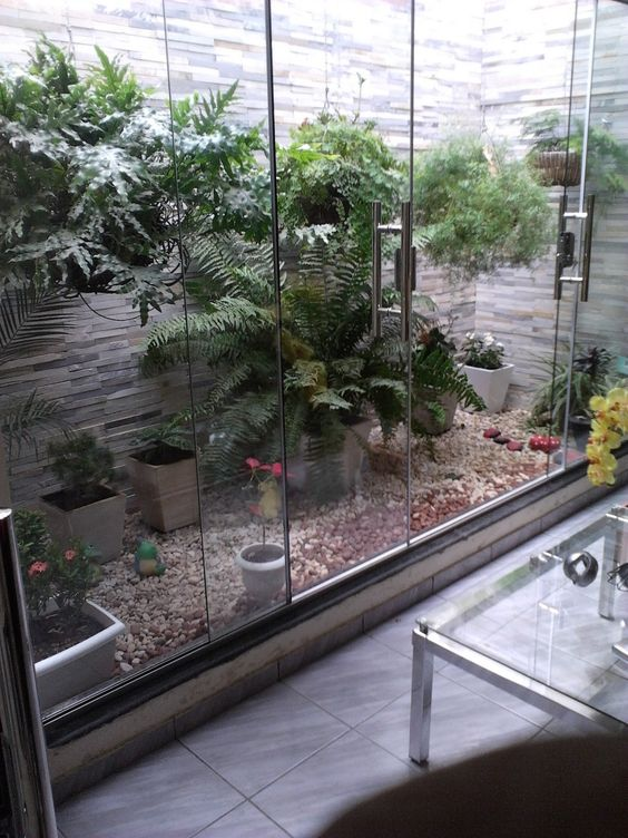 jardim interno com samambaia