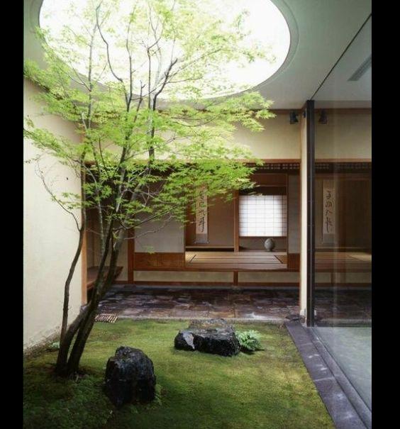 jardim interno com gramado
