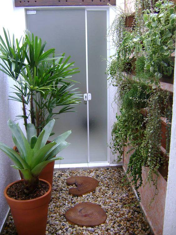 jardim interno com trepadeiras