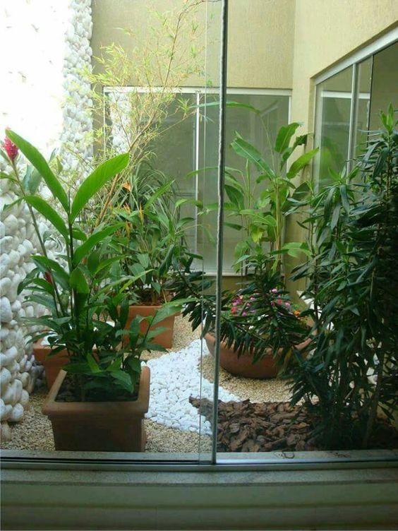 jardim interno com plantas