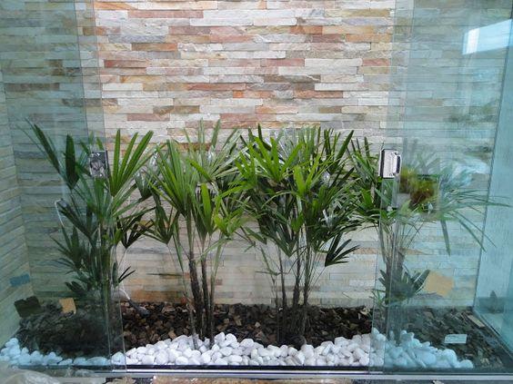 jardim interno com canjiquinha