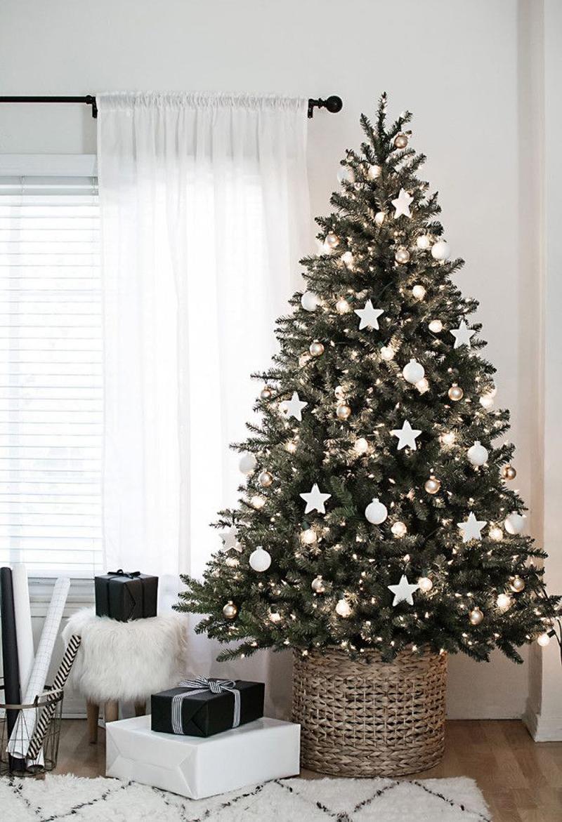 pinheiro natalino estrelinha