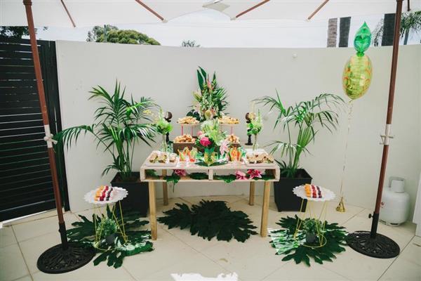 festa tropical barata