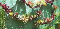 Muros Decorados com Plantas