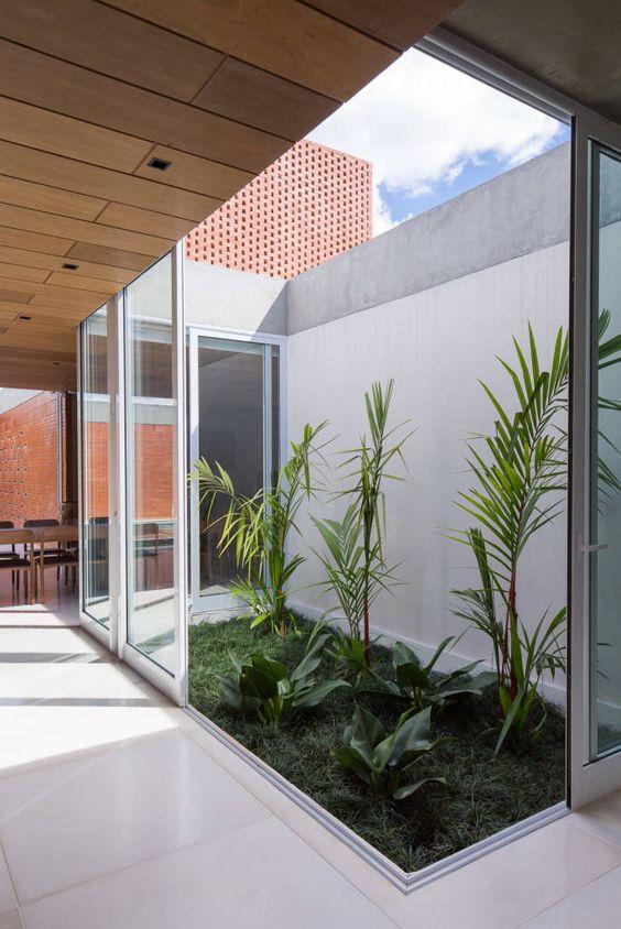 jardim interno com vidro
