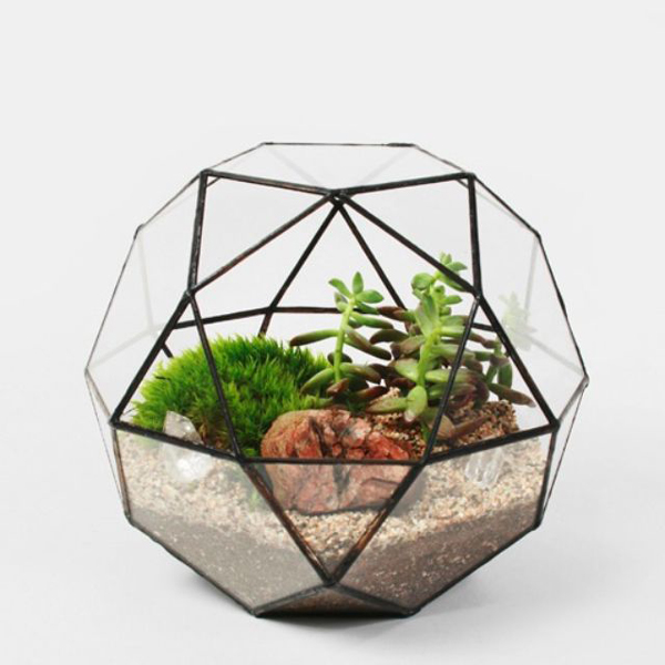 minijardim na esfera