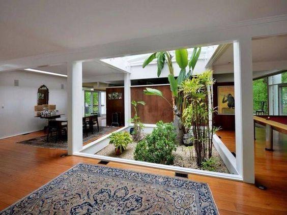 jardim interno com coqueiros