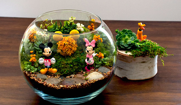 minijardim do mickey e da minnie