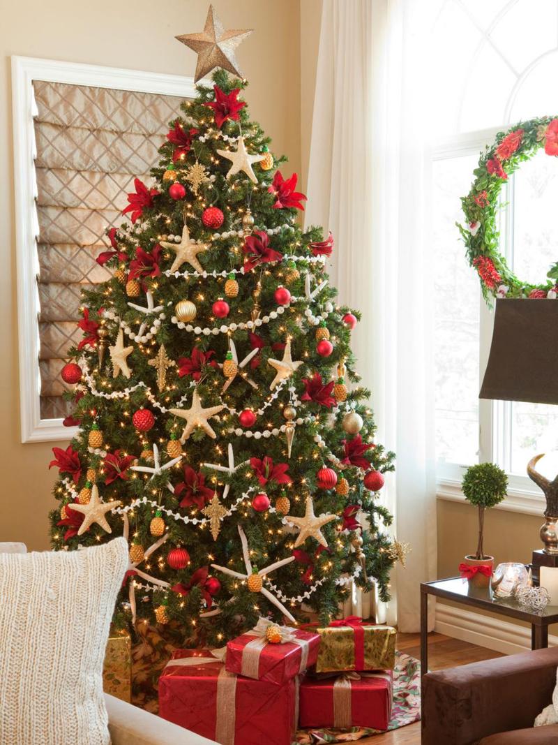 pinheiro natalino estrelas
