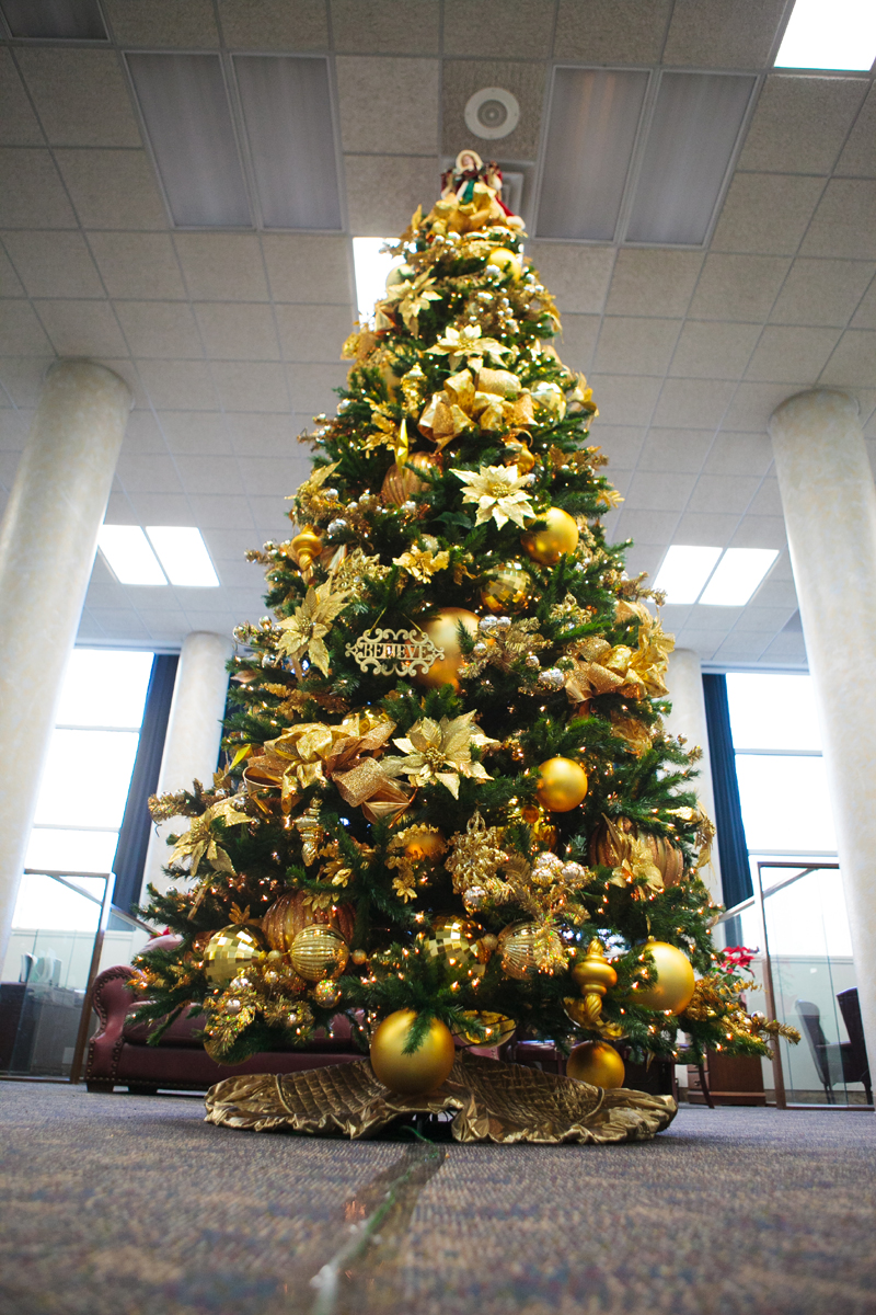 pinheiro natalino ouro