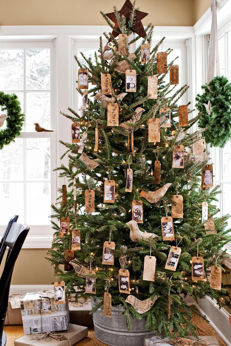 pinheiro natalino juta