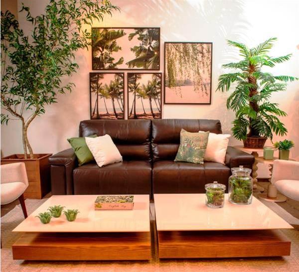 urban jungle no quarto